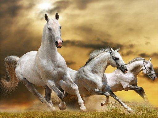 Juega Running Horse Slide juego